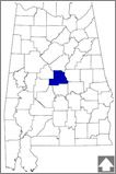 Chilton County was created by an act of the Alabama State Legislature on December 30, 1868. • Over 80 percent of Alabama's peach crop comes from the county. • Alabama Power built its first two hydroelectric plants, Lay Dam and Mitchell Dam, on Chilton County's Coosa River in 1914 and 1922. • In 1902 Civil War veteran Jefferson Manly Faulkner donated 80 acres in Chilton County as the site for the Alabama Confederate Soldiers Home that once housed more than 100 people. #EncylopediaofAlabama