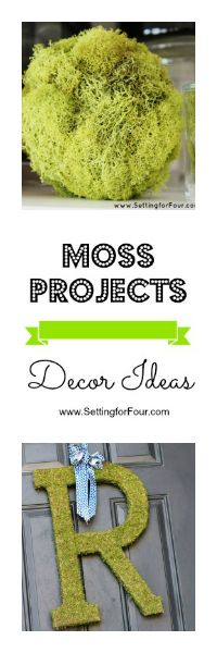 Moss Projects - Decor Ideas from Setting for Four