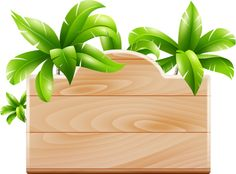 Coconut tree nameplate PNG and Clipart Safari Png, Safari Theme, Borders For Paper, Borders And Frames, Bolo Moana, Shape Templates, Page Borders, Moana Party, Tropical Party