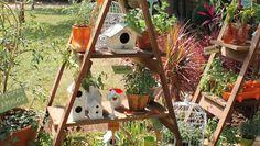 9 dicas para decorar seu quintal