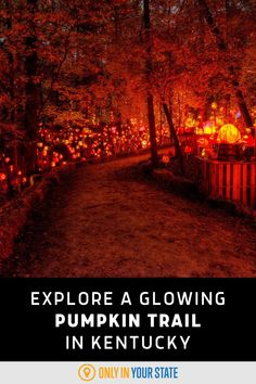 Don't miss the annual display of beautiful glowing pumpkins each fall at this unique Jack O' Lantern trail in a Louisville, Kentucky park. It's perfect for family-friendly Halloween fun.