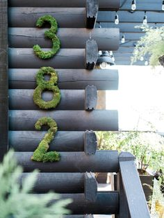 Moss Encrusted Numbers on a Log Wall