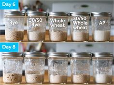 The Best Flour for Sourdough Starters: An Investigation Food Articles, Recipe Articles, Rye Flour, Serious Eats, How To Make Bread, Bread Baking, Starters, Tasty, Breads