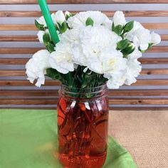 Flower Science Experiment for Kids - 50 White Carnations