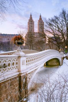 Photograph Central Park in the Snow, The San Remo, New York City, New York, by Joe Daniel Price on 500px