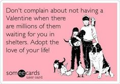 The love of your life could be waiting for you at your local shelter or rescue. Consider the love a dog has to offer, their constant companionship, or just a sympathetic ear. Shelter Dogs, Rescue Dogs, Animal Rescue, Rescue Dog Quotes, Jersey City, Money Cant Buy Love, Valentine's Day, Love Your Life, Animal Quotes