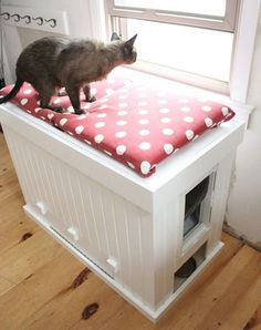 Sneak a litter box into a comfy window seat, and it won't even feel like you're devoting any precious space to your cats, err, business.