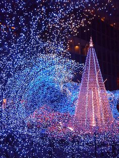 Christmas in Tokyo!!! Bebe'!!! Love the lights!!!