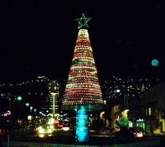 in the absence of all the trees burnt during the recent carmel fire in israel a christmas tree made from plastic bottles stands tall in haifa