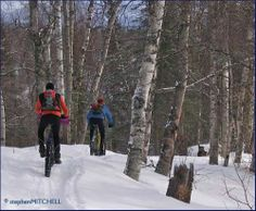 Fat Bike riding in Methow Valley, American Northwest #fatbike #bicycle