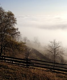 Mountain Mist On The Fence