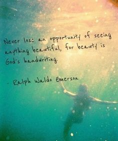 Never lose an opportunity of seeing anything beautiful, for beauty is God's handwriting. Ralph Waldo Emerson.