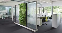 open office space with plant wall Interior Design Chicago, Interior Design Software, Interior Design Website, Office Interior Design, Office Interiors, Open Space Office, Bureau Open Space, Corporate Office Design, Open Office Design