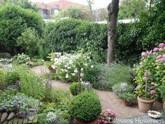 tuin2_d  mooi paadje Outdoor Garden Sheds, Terrace Garden, Garden Paths, Garden Landscaping, Outdoor Gardens, Back Gardens, Small Gardens, Garden Styles, Dream Garden