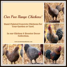 Our Free Range Chicken Collection: Hand-Painted Concrete Chickens. http://www.gershwinandgertie.com/chickenandroosterdecor.aspx