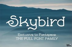Skybird Font - Exclusive to FontSpace Cool Fonts, Fun Fonts, Font Names, Letter I, Font Family, Hand Lettering, Cabinet, Free, Nice Fonts