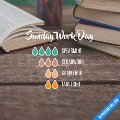 Sunday Work Day - Essential Oil Diffuser Blend