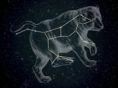 The Great Bear Constellation
