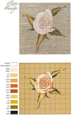 Gallery.ru / Фото #14 - Les Roses de Monique Bonnin - Mongia