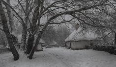 Найрідніші краєвиди української зими... - Український контент