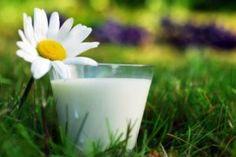 Help increase female fertility  with full fat dairy  #fertility #TTC #dairy