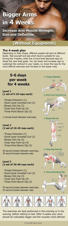 Bodyweight Tricep Exercises and Bodyweight Bicep Exercises – How to Get Bigger Arms at Home - The Health Science Journal - Arm Exercises Without Equipment: 5 Workouts for Arm Muscle Strength, Size and Definition - Get Bigger Arms, How To Get Bigger, Fitness Workouts, At Home Workouts, Fitness Motivation, Gym Workouts For Men, Arm Workouts, Daily Workouts, Daily Routines