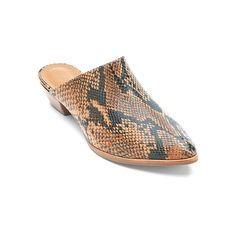 Matisse Clover  Clogs & Mules (1.820 ARS) ❤ liked on Polyvore featuring shoes, snake tan snake, mule shoes, mules clogs shoes, clogs footwear, matisse clogs and clog shoes
