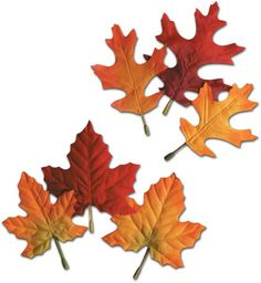 "Fall/Thanksgiving Autumn Leaves - 4.5""""-5.5"""" Case Pack 24"