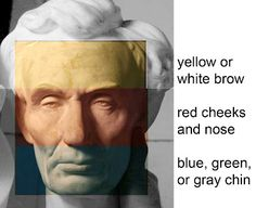 Color zones of the face (from the blog of James Gurney).