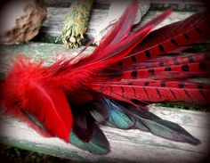 Pheasant Hen Smudge fan, Phoenix Medicine, cruelty-free feathers and sustainable leather handle, by waxandwanewands, $29.99