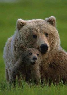 Mama and baby,