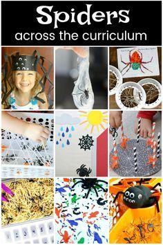 Creative spider craf