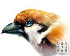 #파스텔화#조류#새#기초디자인#자연물#동물#디자인선수#희철쌤#발상과표현 Birds, Painting, Animals, Animales, Animaux, Painting Art, Bird, Paintings, Animal