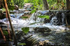 FossilCreek_6a   Flickr - Photo Sharing!