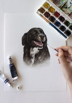 Border Collie pet portrait of a gorgeous dog by Kirsten Jenna Haviland. Flatlay photography of a watercolour painting. Artist, art and artist studio. Flat Lay Photography, Border Collie, Artist Art, Watercolour Painting, Pet Portraits, Mixed Media Art, Dog, Studio, Pets