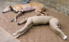 Crocheted lifesized greyhound!