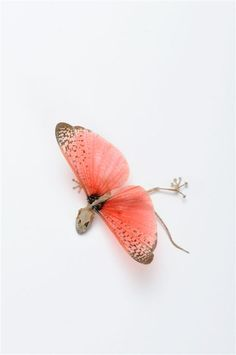 Tehila Levi Hindman - Subala (EXPO Tel-Aviv)#Repin By:Pinterest++ for iPad#