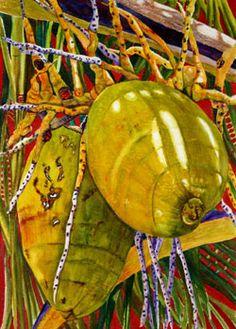 Coconuts ~ Colleen Nash Becht, Watercolor Painting
