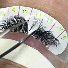 Squirrel Lash Styling - Lined Lash Map Stickers -www.jazzylashco.com