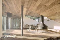 Alpine residence Haus Wiesenhof in Austria by GOGL ARCHITEKTEN