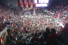 IU fans rush the court after IU beat number one ranked Kentucky at the buzzer on Saturday. — Photo: Joe Hren/WTIU News