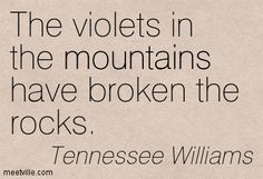 Tennessee Williams The violets in the mountains have broken the rocks. Author Quotes, Literary Quotes, Me Quotes, Tennessee Williams Quotes, Book Writer, Favorite Words, Beautiful Words, In This World, Quotations