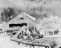 Bay View Lumber Mill, S. Whidbey Island, WA 1912 Old Photos, Vintage Photos, Mill Work, Lumber Mill, Agriculture Industry, Logging Equipment, Whidbey Island, Lumberjacks, Landscape Wallpaper