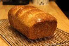 This Honey Graham Oatmeal Bread, made with bread flour, graham flour and rolled oats, is prepared in a bread machine, then baked in a conventional oven. Bread Machine Recipes, Flour Recipes, Bread Recipes, Graham Flour, Yeast Free Breads, Bread Winners, Oatmeal Bread, No Flour Pancakes, Artisan Bread