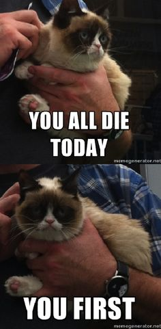 You all die today...-Grumpy Cat