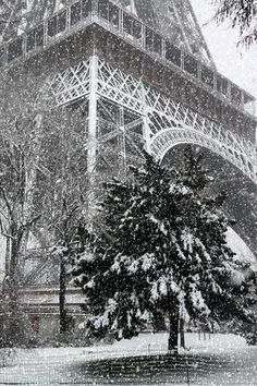 Paris, France - Christmas in Paris, best time f the year for many in France. It is known that most of the US citizens and Canadians travel to Paris especially for Christmas. The France capital has much to offer for this day, i am not going to spoil it for you by reviling all the secrets, you'll must discover them by yourself. #Paris #France
