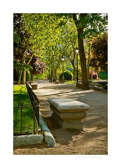 in the park Stepping Stones, My Photos, Park, Illustration, Outdoor Decor, Image, Sun Art, Visual Arts, Graphic Art