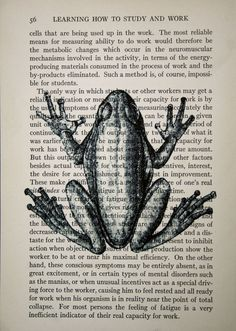 44 Best Frogs Images In 2015 Frogs Drawings Frog Art