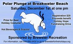 PolarPlunge-Dec. 1st as part of the Brewster for the Holidays weekend! Cape Cod.