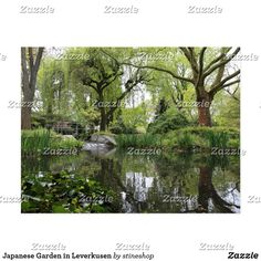 Shop Japanese Garden in Leverkusen Postcard created by stineshop. Panel Wall Art, Wood Wall Art, Wall Art Decor, Garden Gifts, Beautiful Wall, Postcard Size, Wall Signs, Wood Print, Wall Prints